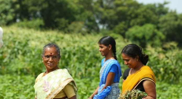 Asia-Pacific: 'Call to action' highlights role of family farmers amidst COVID-19 pandemic