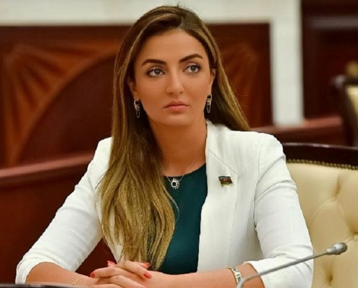 Azerbaijani MP appreciates support of OIC countries in face of Armenian aggression