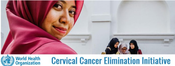 Banner of the Cervical cancer Elimination newsletter
