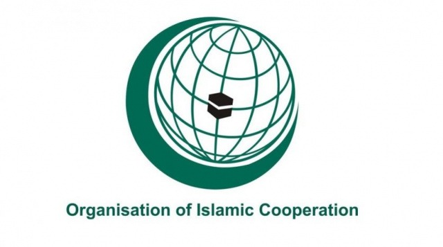 Deputy FM holds talks with OIC Assistant Secretary General