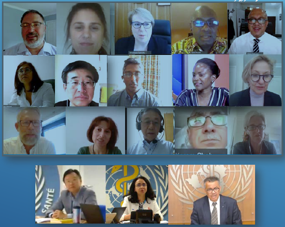 Introductory meeting of WHO's Strategic and Technical Advisory Group for Tuberculosis