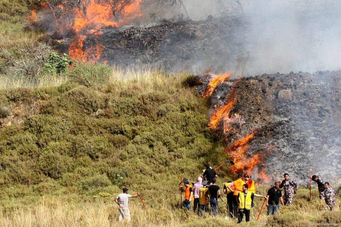 Jewish settlers set fire on Palestinian-owned olive and almond trees south of Nablu