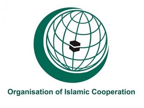 OIC renews call for abstaining from altering demographic composition of Jammu and Kashmir