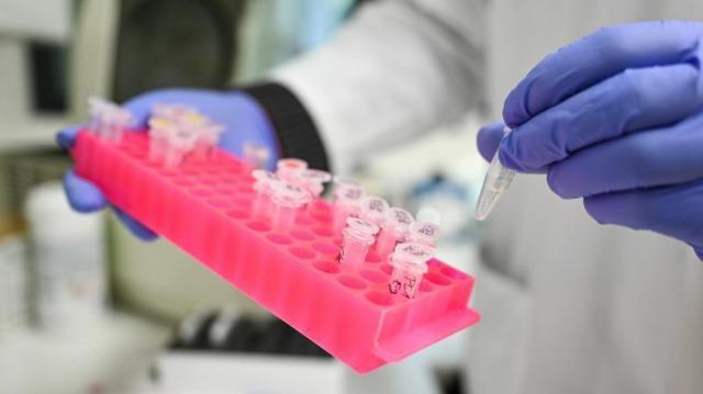 Coronavirus update: 50,634 cases in Uzbekistan