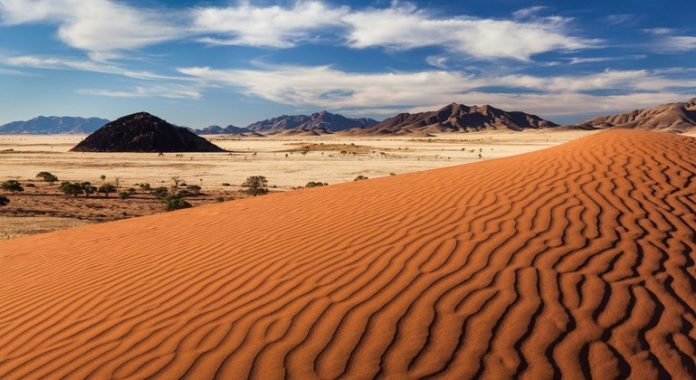 Survival of wildlife reserves under threat in Namibia