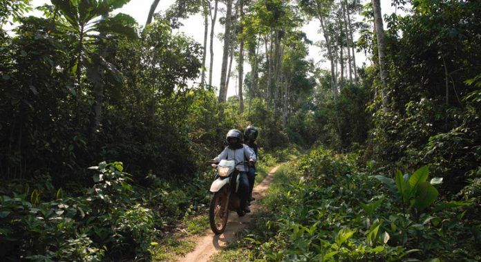 WHO warns against potential Ebola spread in DR Congo and beyond