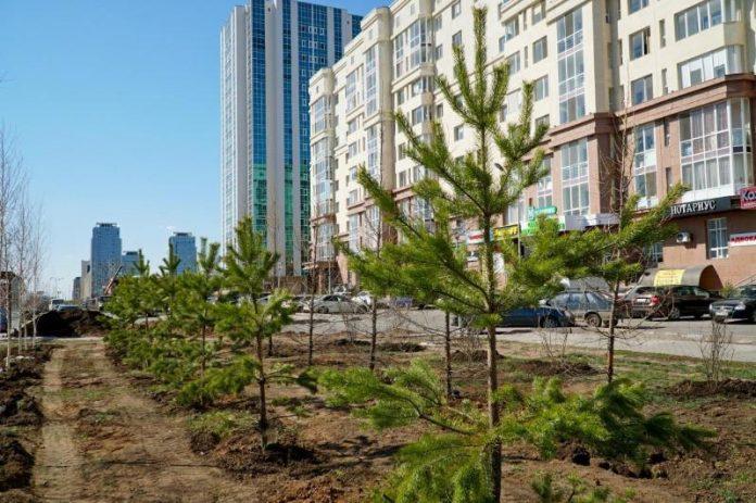 Kazakh capital to plant 80,000 plants this year