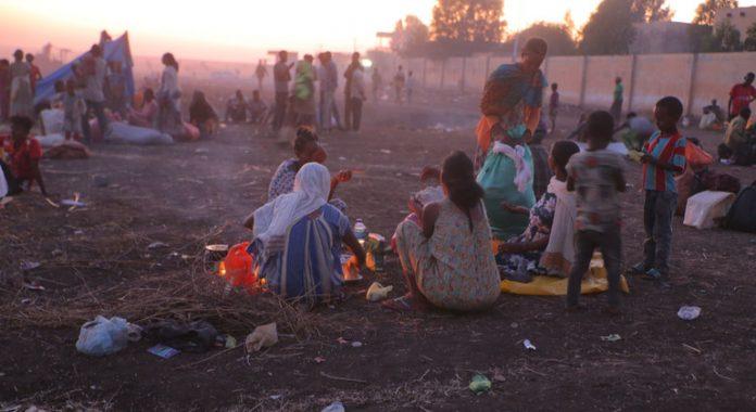 'Full scale' humanitarian crisis unfolding in Ethiopia's Tigray: UNHCR
