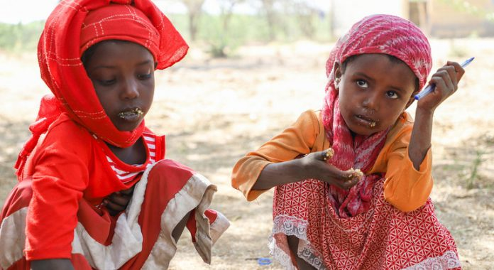 Ethiopia: 'Halt the violence', resolve grievances peacefully – UN rights chief