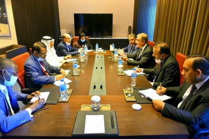 Pakistani foreign minister meets with OIC Secretary General in Niger