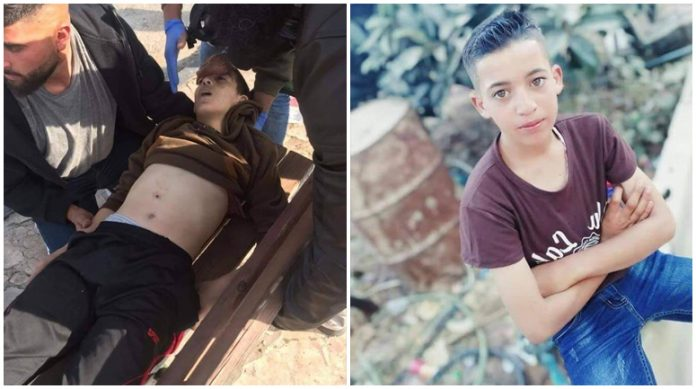 In two weeks, Israelis kill 2 Palestinians, injure 206, detain 149, demolish 52 structures, uproot 500 trees