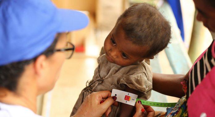 Humanitarian crisis looms in Madagascar amid drought and pandemic