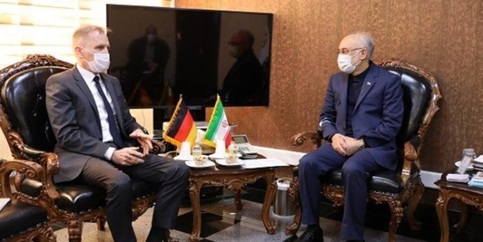 Iran top nuclear official, German ambassador discuss issues of mutual interest