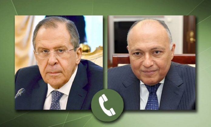 Egypt's FM, Russian counterpart discuss bilateral relations, regional issues