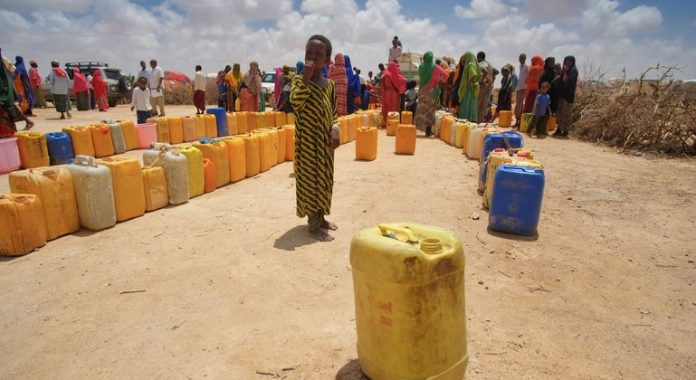 Poor seasonal rains threatening 'foundations' of tens of thousands of Somali livelihoods