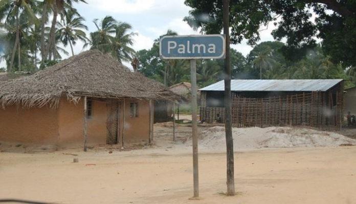 Terrorist groups seize Palma town in northeastern Mozambique