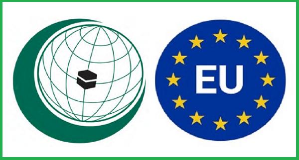 OIC, EU organize virtual workshop on election observation