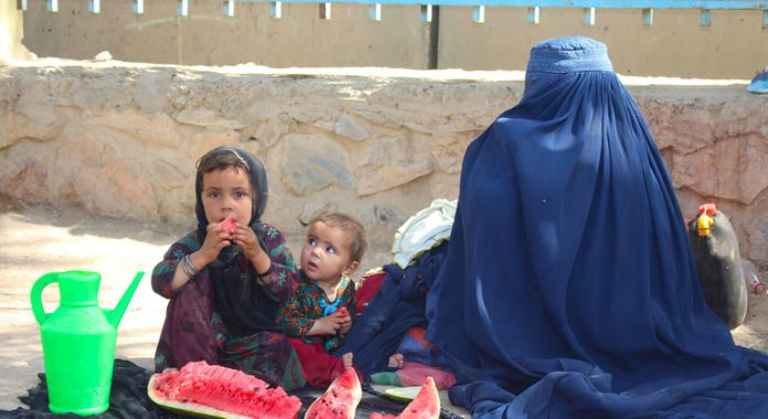 Afghanistan: Negotiations to bring 500 tonnes of urgent medical supplies ongoing, says WHO