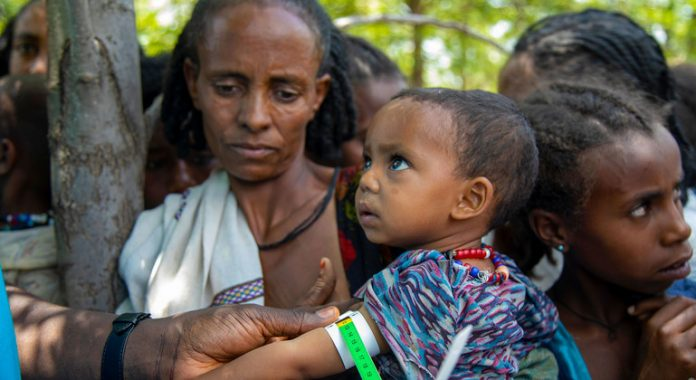 Multiple reports of alleged human rights violations in Tigray